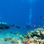 جزيرة تاهيتي .. وجهة الحلم والسعادة في قلب بولينيزيا الفرنسية