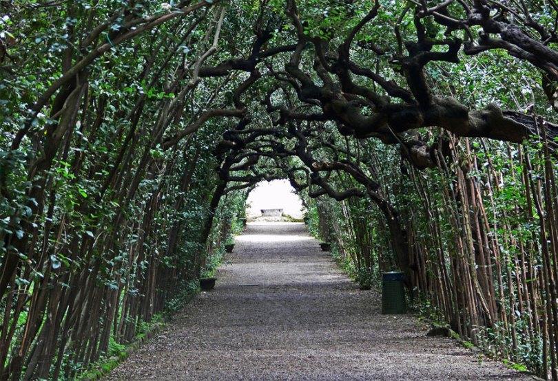 حدائق بوبولى