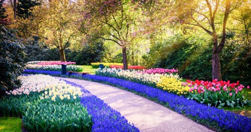 الحدائق الوطنية النباتية فى دبلن
