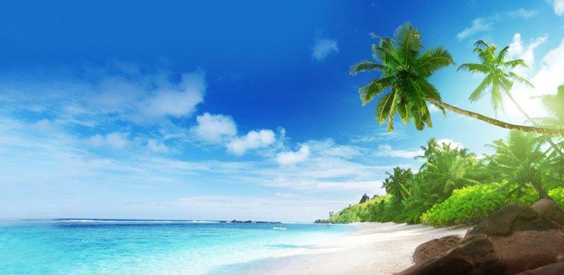 شاطئ وايكيكي