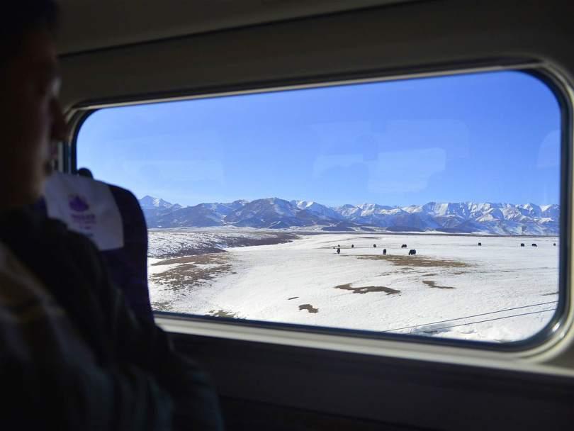 القطار الصحراوى