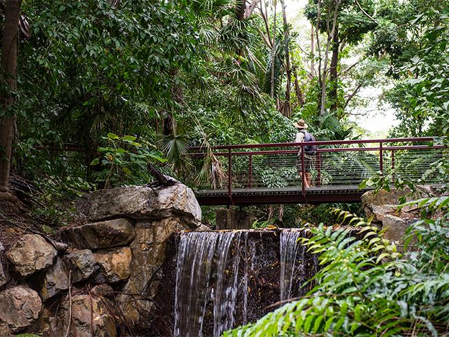 حدائق داورين النباتية
