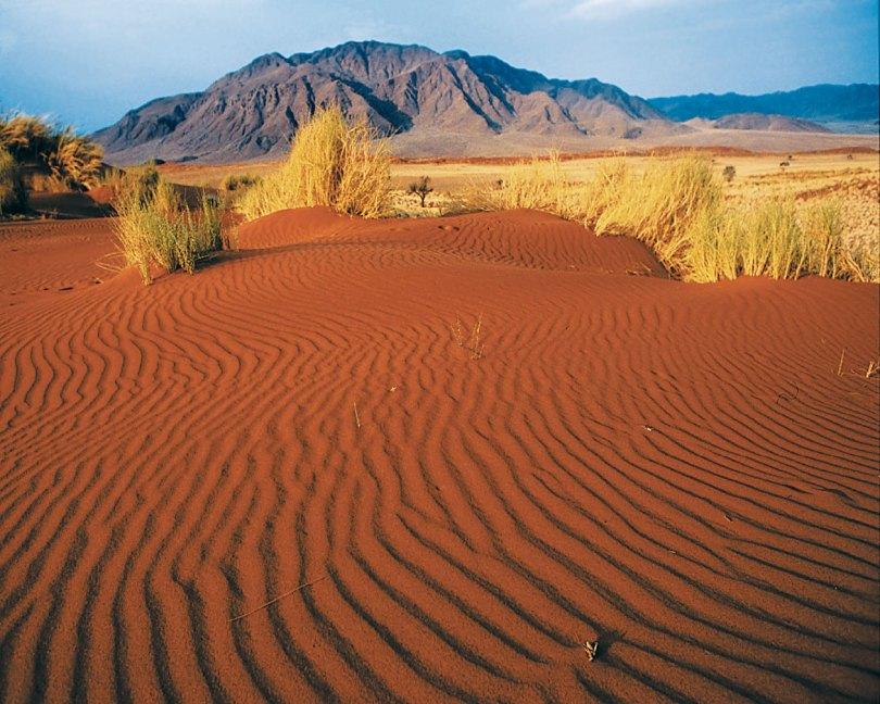 صحراء ناميبيا