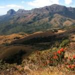 أفضل الأماكن السياحية التي يمكنك الاستمتاع بها في زيمبابوي