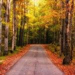 بالصور ..10 حدائق عالمية تستحق أن تزورها في فصل الخريف لتستمتع بسحر ألوانها