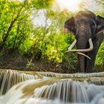 السياحة في كانشانابوري تايلند وأجمل الأماكن السياحية للزيارة