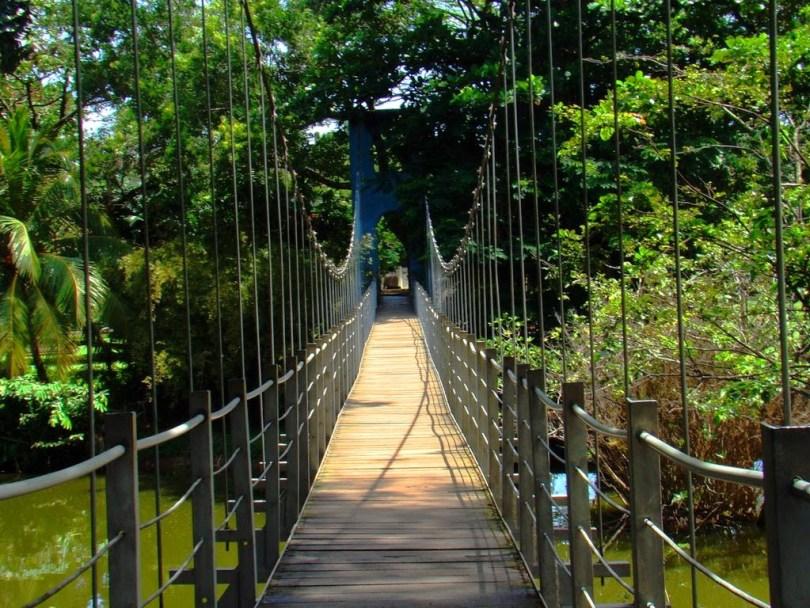 برنامج سياحي لزيارة سيرلانكا