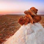 السياحة في جربة تونس وأجمل الأماكن السياحية هناك