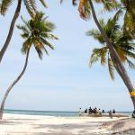 أفضل فنادق مافوشي المالديف .. تعرف عليها
