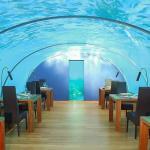10 من أفضل المطاعم في جزر المالديف