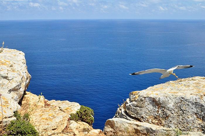 الجزر في إسبانيا