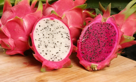 فاكهة التنين - Dragon Fruit