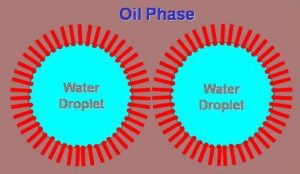 Oil Phase Emulsion