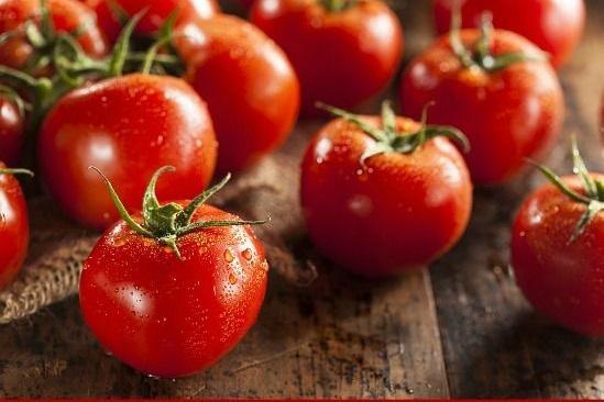تناول الطماطم