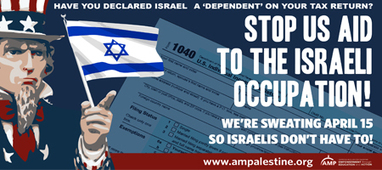 Image result for americans for palestine