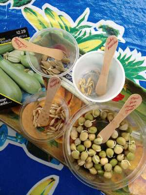 Mediterranean Cooking from the Garden with Linda Dalal Sawaya: 2016 declared Year of the Pulses!