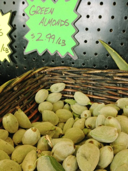 Mediterranean Cooking from the Garden with Linda Dalal Sawaya—Green almonds, a sure sign of Spring!