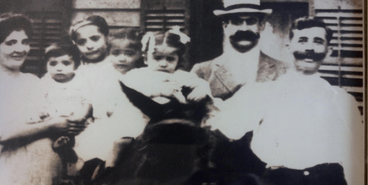 Diversity: The Struggle and the Celebration of Arab-Americans