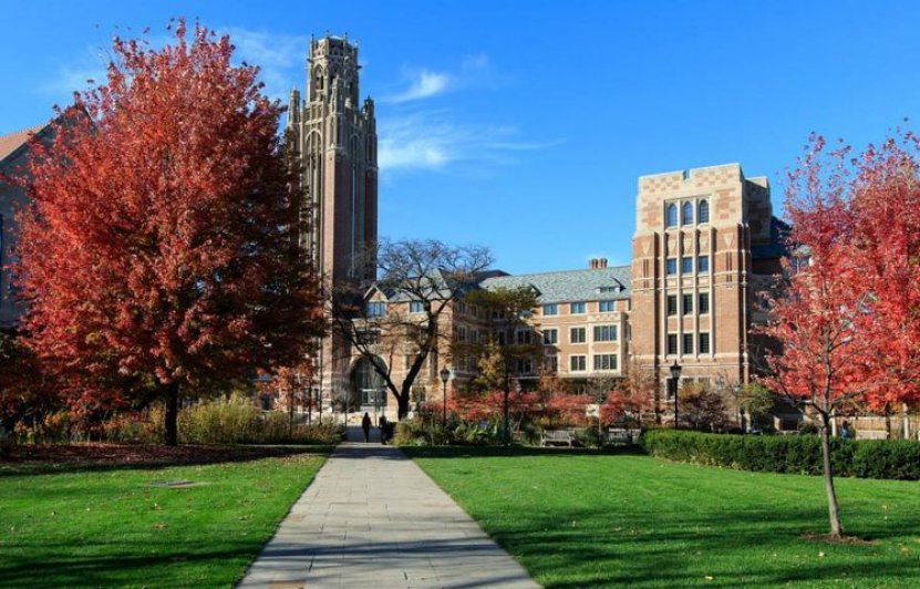 Middle East Studies, University of Chicago