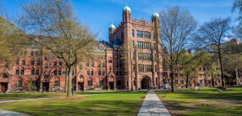 Middle East Programs, Yale