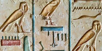 Egyptology in the 21st Century : A Conversation with Faye Wills