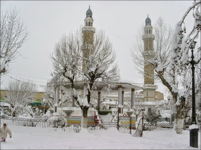 Welcoming the Snow in Algeria