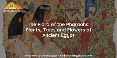 The Flora of the Pharaohs: Plants, Trees and Flowers of Ancient Egypt