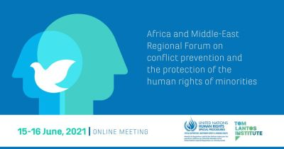 2021 Africa-Middle East Regional Forum on Minority Issues