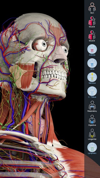 عرض تخفيضي على تطبيق Essential Anatomy 5 للمتخصصين في الطب