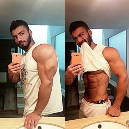 arabe muscle 113