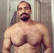 arabes poilus et bears 36