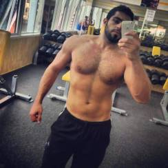 arabe muscle 00018