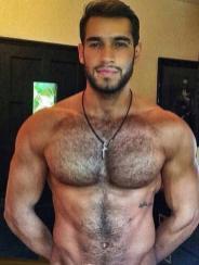 arabe muscle 00021