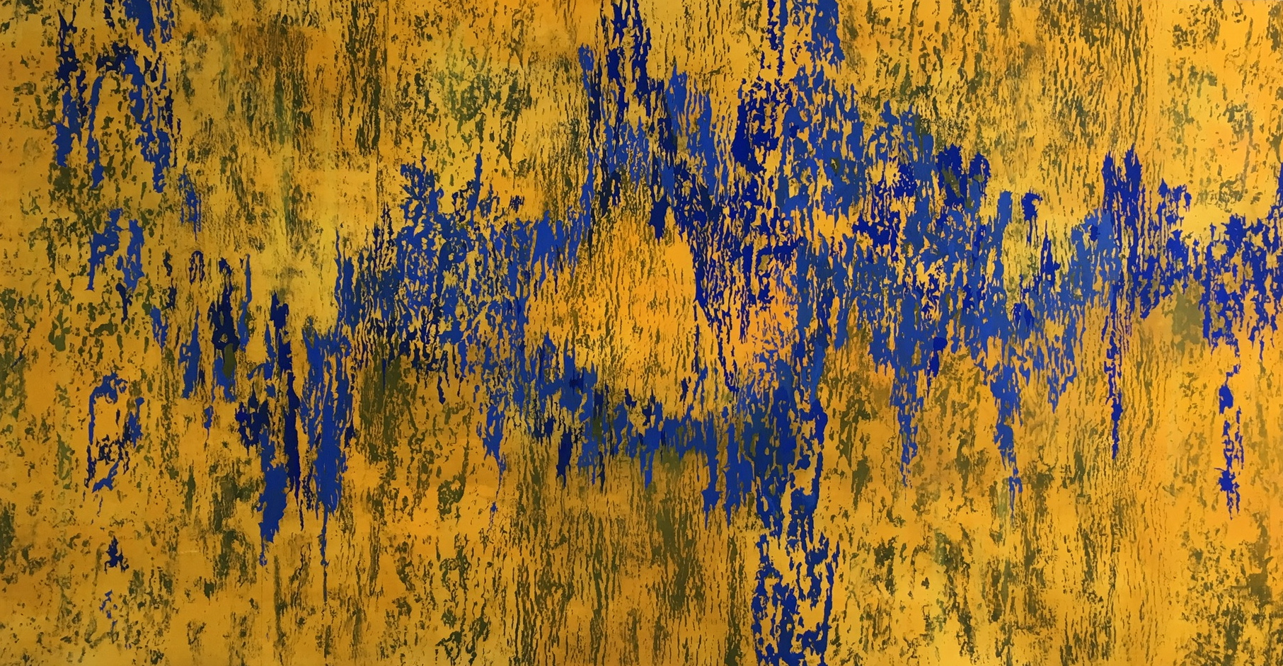 Composition in Ultramarine and yellow, milk paint on paper 154 x 274 cm 2016