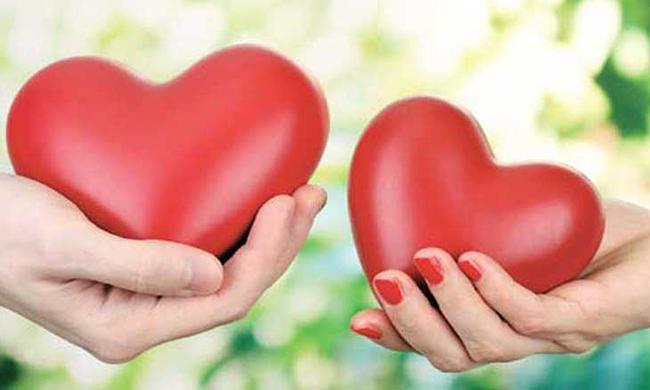 شات الحب