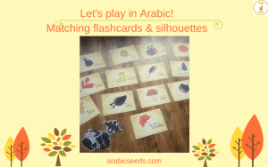 Let's play in Arabic! Listening & speaking games with flashcards - matching game - Arabic Seeds - Arabic for kids