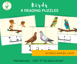 Arabic birds reading puzzles - themed unit - Arabic Seeds printables for kids