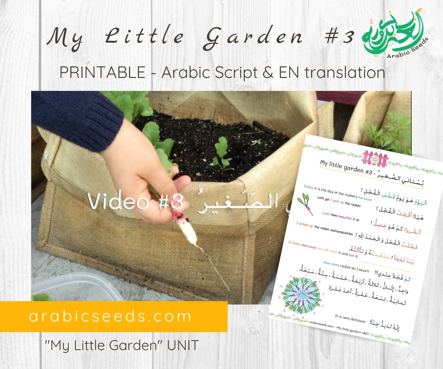 My Little Garden 3 - Arabic video for kids printable Arabic Seeds unit