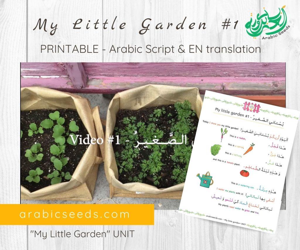 My-Little-Garden 1-Arabic-video-for-kids-printable-Arabic-Seeds-unit
