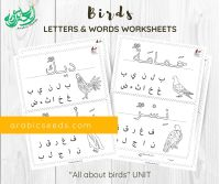 Arabic Birds Writing Worksheets - words letter recognition - Arabic Seeds printable for kids-2