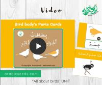 Listen and repeat Arabic video bird flashcards - Birds theme unit-2