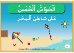 """Five senses at the beach"" Arabic book read-aloud video"