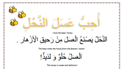 Spring worksheets - Lesson 3 the bees arabic