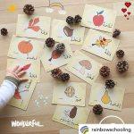 Fall Flashcards - photo by @rainbowschooling (IG)