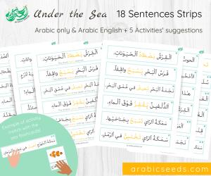 Arabic under the sea sentences strips printable - Arabic Seeds themed units