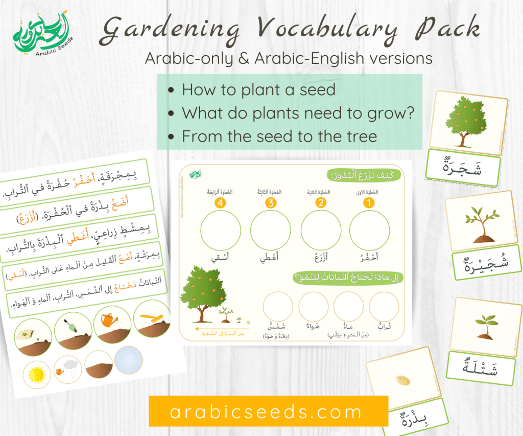 Arabic Gardening Vocabulary pack, how to plant, plants needs, from seed to tree - Arabic Seeds printables