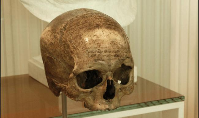 جمجمة الفيلسوف الفرنسي رينيه ديكارت كما تظهر بمتحف الإنسان بباريس، حيث يقول الدكتور مصطفى شاكر إن جمجمة سليمان الحلبي موجودة بالقرب منها