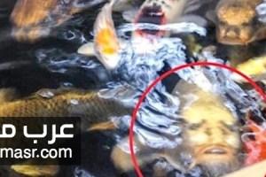 مواقع السوشيال ميديا تدور حول ظهور وجه المسيح علي احدي الاسماك في اشتون