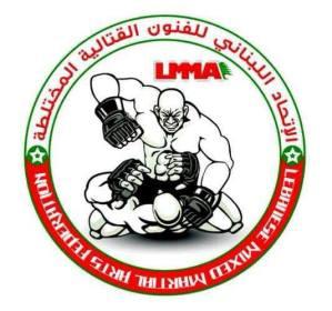 Lebanese MMA referee