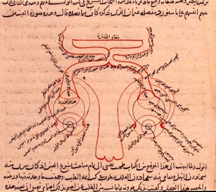 2-العين لابن الهيثم